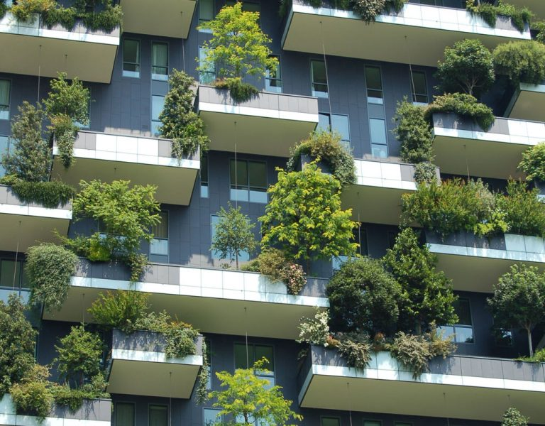 L'agriculture urbaine développement immobilier