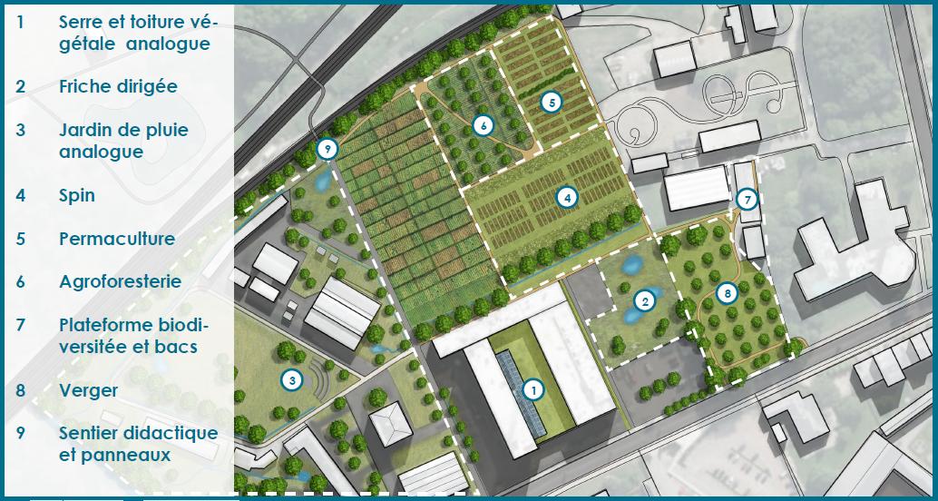 WASABI - plateforme test et de démonstration en agriculture urbaine